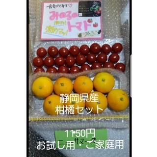 静岡県産ニューサマー&みのるのミニトマトセット(野菜)