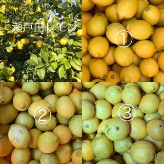せとだレモン ①②混合 5キロ(フルーツ)