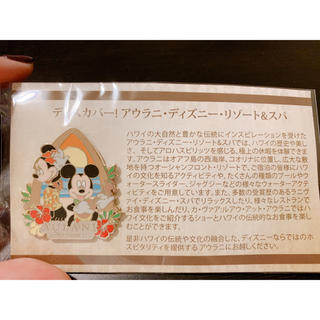 ディズニー(Disney)のアウラニ ディズニーピンバッジ 非売品(バッジ/ピンバッジ)