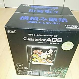 グラステリアAGS(アクアリウム)