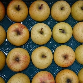 りんご 星の金貨5kg 20玉(フルーツ)