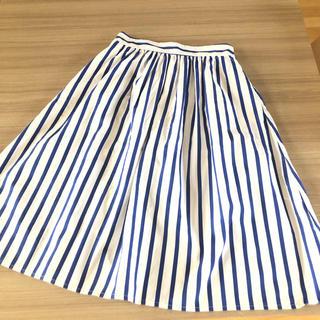 ザラ(ZARA)のZARA  コットン  ストライプ  スカート サイズXS(ひざ丈スカート)