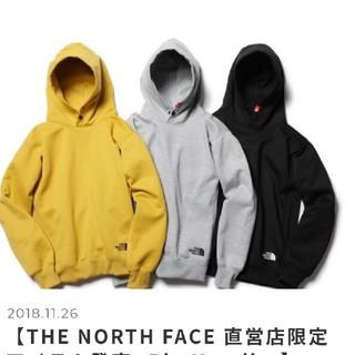 ザノースフェイス(THE NORTH FACE)のTHE NORTH FACE big hoodie希少XL   (パーカー)