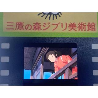 ジブリ - 三鷹の森ジブリ美術館 フィルム型入場券 千と千尋の神隠し 千 下を覗く