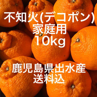 鹿児島県出水産 不知火デコポン 10kg 家庭用 送料込