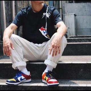ナイキ(NIKE)の美品 NIKE atmos別注 肩掛け ダンク マルチ L Tシャツ(Tシャツ/カットソー(半袖/袖なし))