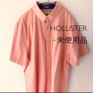 ホリスター(Hollister)のホリスター 新品未使用品 半袖シャツ Lサイズ HOLLISTER(シャツ)