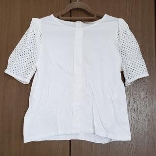 アウィーエフ(AuieF)のAuieF ブラウス カットソー トップス(Tシャツ(半袖/袖なし))