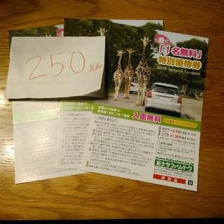 富士サファリパーク 一名無料 特別優待券