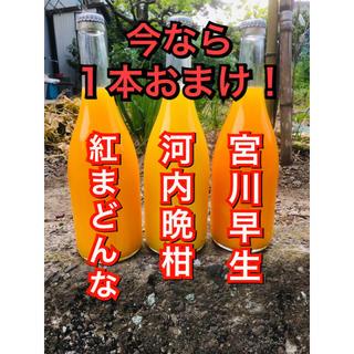 紅まどんな・宮川早生・河内晩柑の無添加ジュースセット★今ならプラス1本おまけ!!(フルーツ)