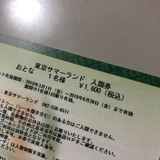 【割引】東京サマーランド 入園券