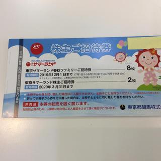 東京サマーランド 株主ご招待券 1冊