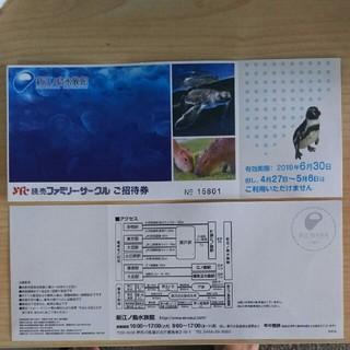 新江の島水族館 招待券