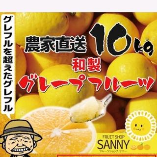 農家直送‼️渋味の少ない和製 訳あり家庭用 グレープフルーツ10kg(フルーツ)