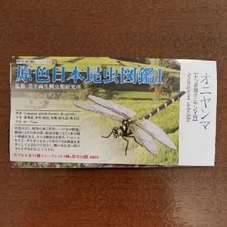 原色図鑑シリーズ オニヤンマ