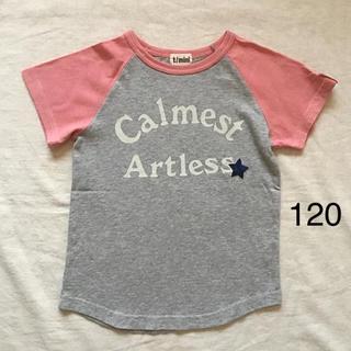 ターカーミニ(t/mini)のターカーミニ    星刺繍ロゴプリントラグランT  120(Tシャツ/カットソー)