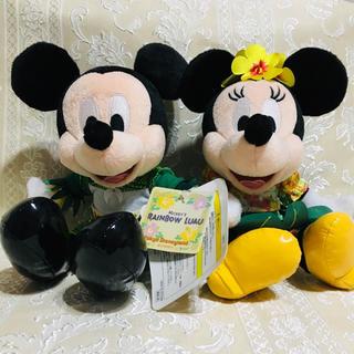 Disney - レア★新品タグ付★廃盤品★ミキミニペア レインボールアウぬいぐるみ