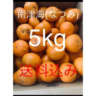 愛媛県 訳あり傷あり幻の春みかん 南津海(なつみ)5kg(フルーツ)
