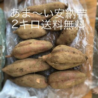 安納芋ー2キロ送料無料
