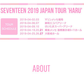 seventeen 4/27 大阪 オーラス 注釈付 1枚(K-POP/アジア)