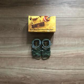 キャラメルベビー&チャイルド(Caramel baby&child )のsalt water sandals us7(サンダル)
