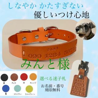 みんと様 猫用 首輪 SSサイズ(リード/首輪)