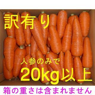 徳島産/ハウス栽培 人参 訳あり品(曲がり・軽微なシミ・角など)20kg以上(野菜)