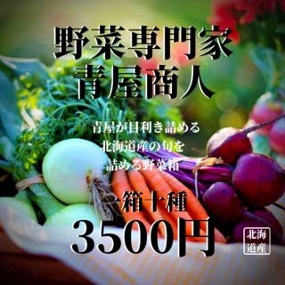 野菜箱【一箱十種】(野菜)
