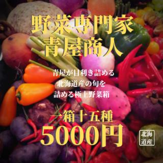 極上野菜箱【一箱十五種】