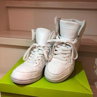 アディダス(adidas)のアディダス ハイカットスニーカー ホワイト(スニーカー)