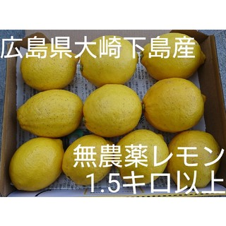 広島県大崎下島産 無農薬レモン 1.5キロ