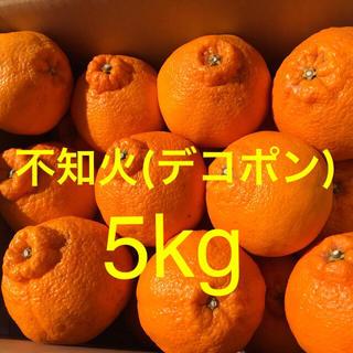 鹿児島県出水産 不知火デコポン 家庭用 5kg 送料込(フルーツ)