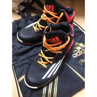アディダス(adidas)のバッシュ(バスケットボール)