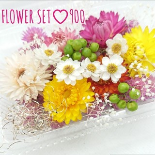 ドライフラワー花材セット900♡ ハンドメイド花材(ドライフラワー)