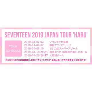 HARU(K-POP/アジア)