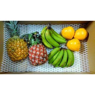 REICCOさま専用 沖縄のフルーツセット♪(フルーツ)