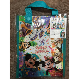 Disney - 35周年 ディズニーリゾート実写 レジャーシート