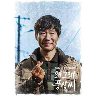 韓国ドラマ どうしたのプンサンさん DVD版 全40話(TVドラマ)
