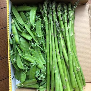 アスパラガス400gキヌサヤ300g(野菜)