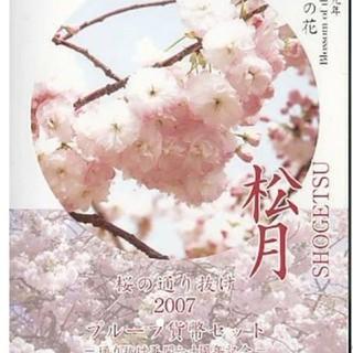 桜の通り抜け 2007 松月 プルーフ貨幣セット 平成19年(貨幣)