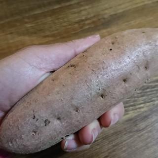 マロンさん用 安納芋 10キロ 熟成芋 完熟!(野菜)