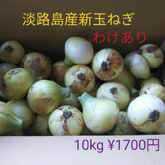 淡路島産新玉ねぎ 訳あり10kg ¥1700円(送料込み) 食品/飲料/酒の食品(野菜)の商品写真
