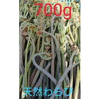 天然わらび 700g4月26日(金)朝採り&発送分!(野菜)