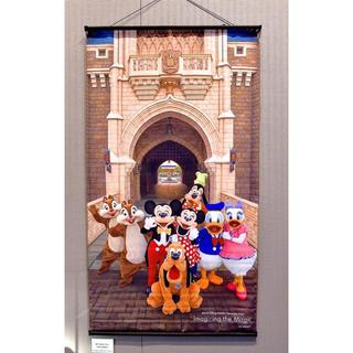 Disney - ディズニー イマジニングザマジック  実写 イマジニング