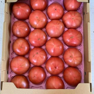 規格外品トマトLサイズ20玉‼️