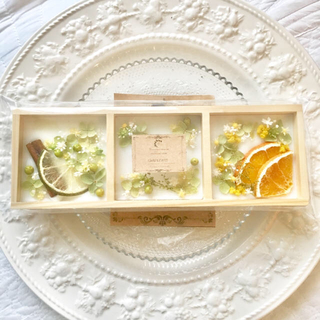 【あきら様専用ページ】natural plate ※アロマワックス(アロマ/キャンドル)