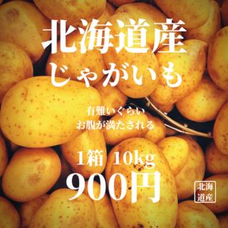 男爵いも10kg(野菜)