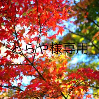 とらや様専用ページ(アート/写真)