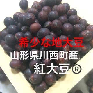 山形県川西町産 紅大豆®️900g(野菜)
