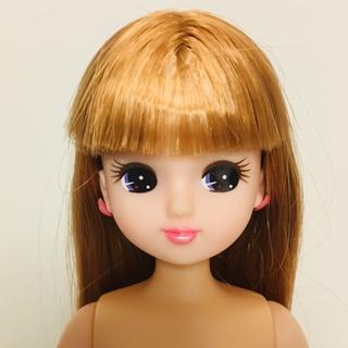 リカちゃん人形(ぬいぐるみ/人形)